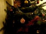 Кошка на вершине елки. Теперь с игрушками.